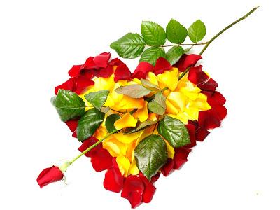 imagenes-de-amor-postales-gratis-para-el-14-de-febrero-rosas-y-corazones-1