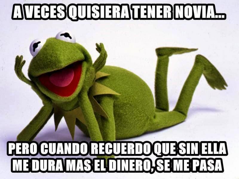 Los Mejores Memes De La Rana Rene