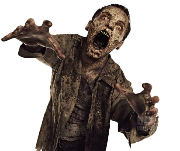 zumbi_the_walking_dead_render_by_twdmeuvicio-d6g9auh