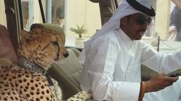 Las cosas que nadie sabe de Dubai