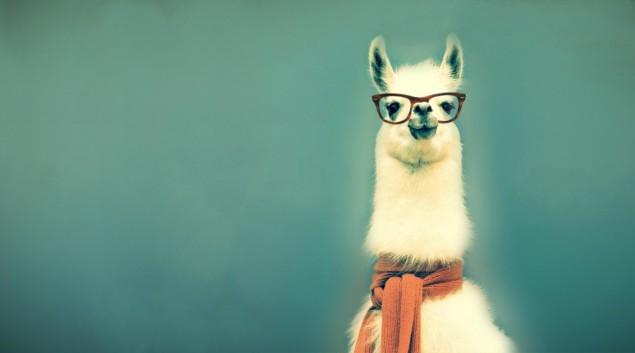 Hipster Facebook Cover Photos