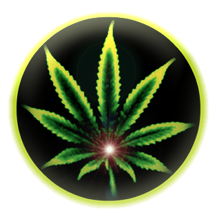 amsterdam-cannabis-ministry