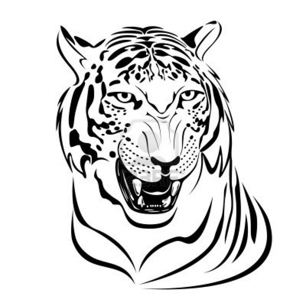 dibujos de tigre para colorear 0