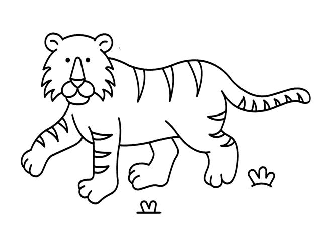 dibujos de tigre para colorear 5