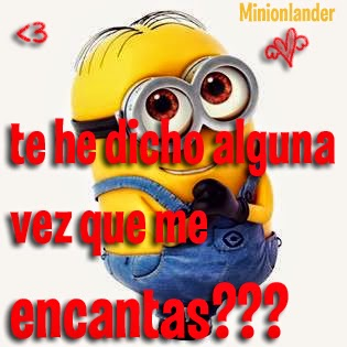 adorable minion amor me encantas