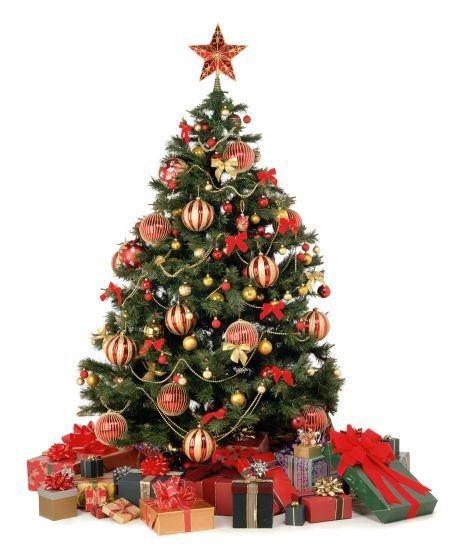 origen-arbol-de-navidad