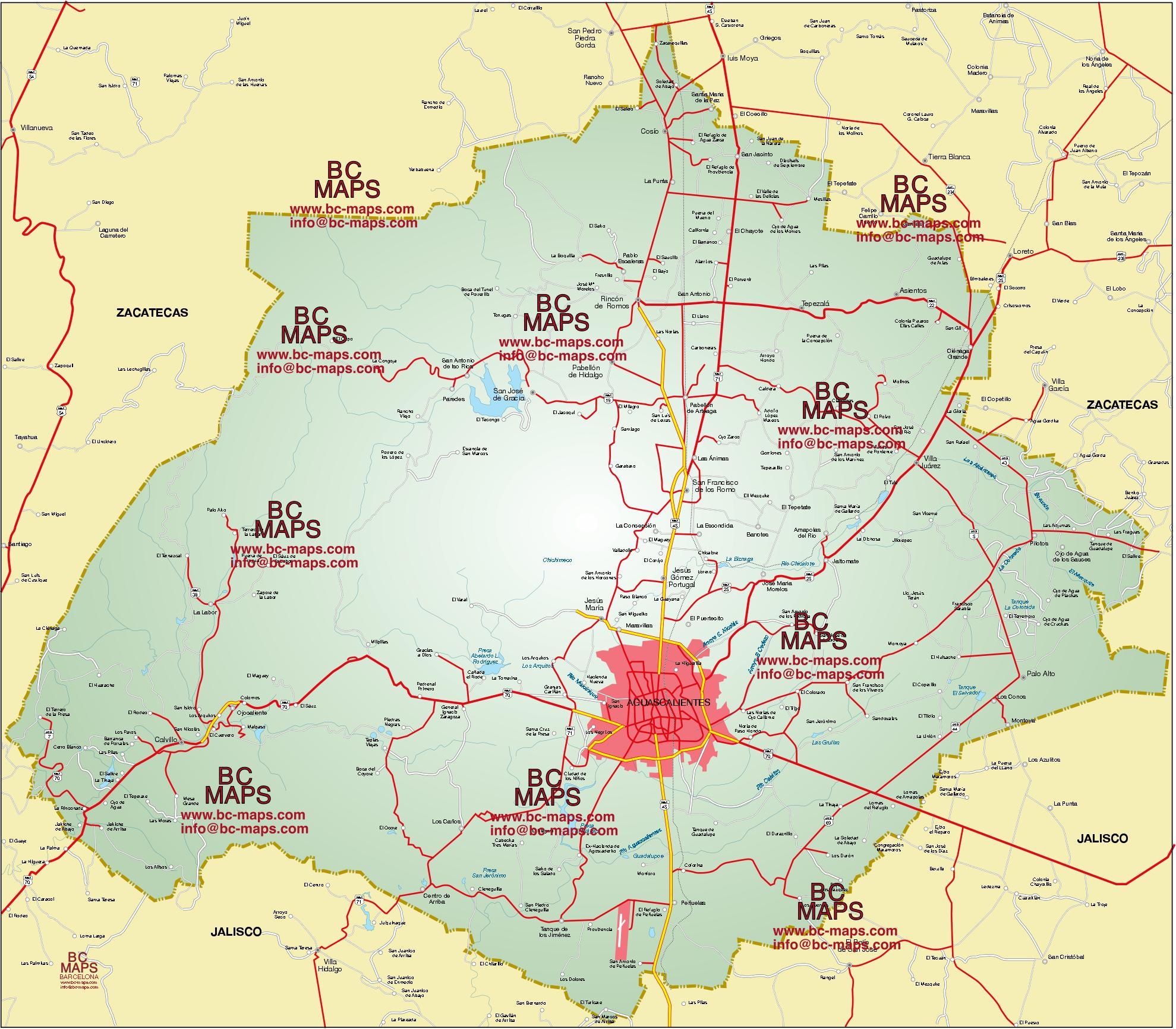 aguascalientes-mapa-vectorizado