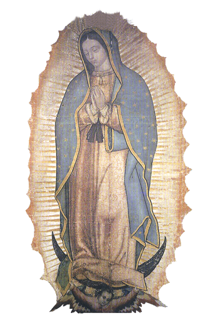 Guadalupe (2)