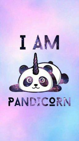 Wallpaper de pandas