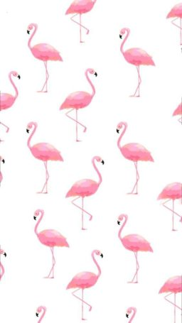 Wallpaper flamenco (flamingo)
