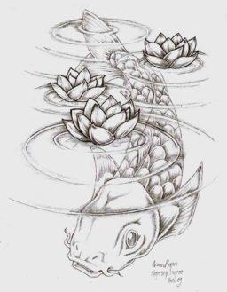 Imagenes peces koi
