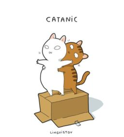Imagenes de gatitos divertidos