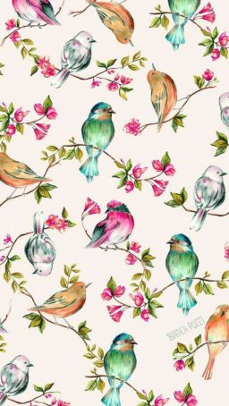 Wallpaper de aves