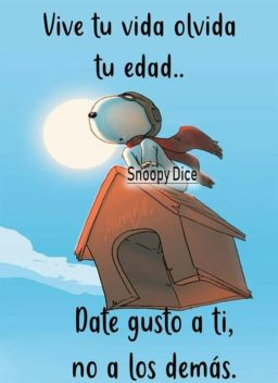 Frases con Snoopy