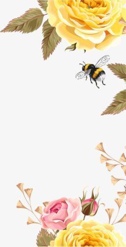 Imágenes de abejas