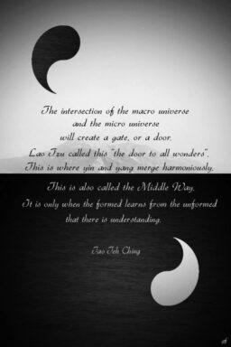 Significado de Yin y yang